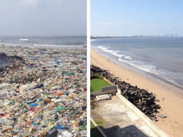 trước và sau khi dọn dẹp rác thải